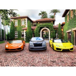 Exotic Car Adventure Tour