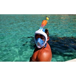 Snorkeling from $75 P/P